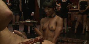 Interracial Slaves Fucked At Bdsm Party
